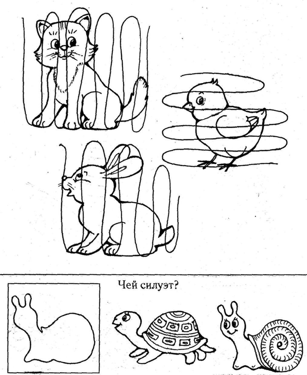 Зашумленные картинки для детей домашние птицы